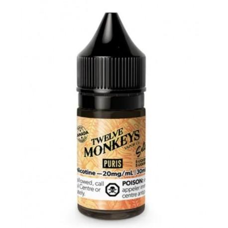 12 Monkeys Salt Nic Puris