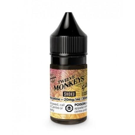 12 Monkeys Salt Nic Shoku